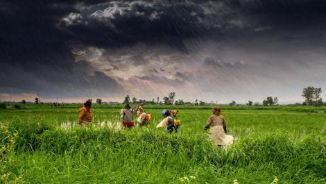 indian-monsoon-season
